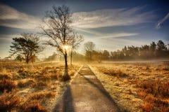 Soluppgång i Hoog Buurlo arkivfoto