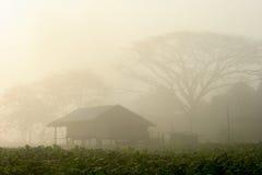 Soluppgång i lantgård Arkivfoto