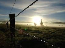 Soluppgång i lantgårdlandet Fotografering för Bildbyråer