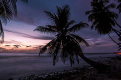 Soluppgång i Maldiverna på en härlig solig dag Fotografering för Bildbyråer