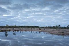 Soluppgång i myren Iskallt kallt träsk Frostig jordning Träsk sjö och natur Frysningtemperaturer i hed Muskeg naturlig miljö royaltyfri bild