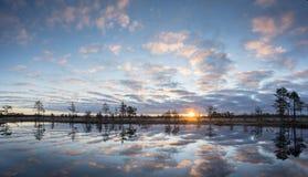 Soluppgång i myren Iskallt kallt träsk Frostig jordning Träsk sjö och natur Frysningtemperaturer i hed Muskeg naturlig miljö arkivfoton