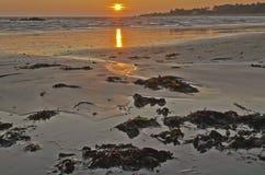 Soluppgång i nordlig kostnad av den Yeu ön royaltyfria bilder