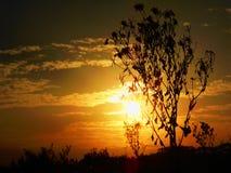 Soluppgång i paradis Royaltyfria Bilder