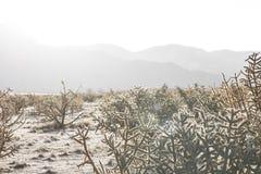 Soluppgång i pueblo Arkivbilder