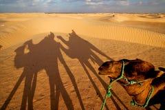 Soluppgång i sahara'sens öken Fotografering för Bildbyråer