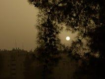 Soluppgång i sandstorm Arkivbild