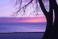 Soluppgång i skuggor av rosa färger och lavendel, Pratt strand, Chicago royaltyfri bild