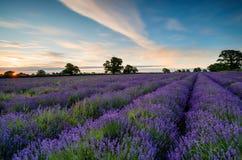 Soluppgång i Somerset Fotografering för Bildbyråer