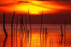 Soluppgång i songkhlasjön Phatthalung Thailand Royaltyfria Bilder