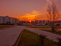 Soluppgång i staden Fotografering för Bildbyråer