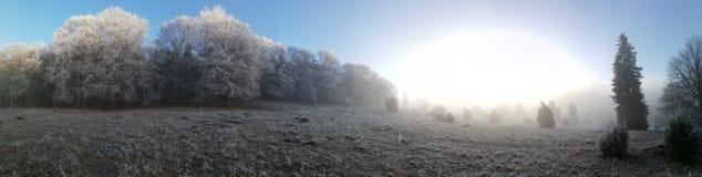 Soluppgång i vinter arkivbild
