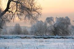 Soluppgång i vinter Royaltyfri Foto