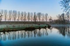 Soluppgång i vinter i mitt av naturen med en sjö och träd royaltyfri fotografi