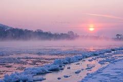 Soluppgång i vintern Royaltyfri Fotografi