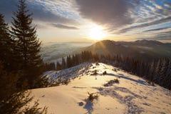 Soluppgång i vintern Carpathians Arkivfoton