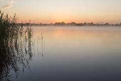 Soluppgång med gräs på sjön Arkivbilder