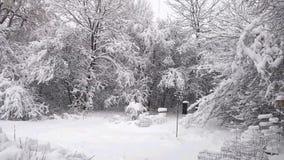 Soluppgång med snö på träd arkivfilmer