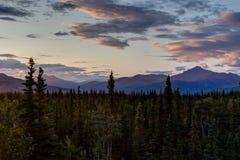 Soluppgång med träd och in mot berg i Alaska Förenta staterna Arkivfoton