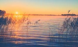 Soluppgång Misty Lake royaltyfria foton