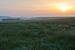 Soluppgång och grässlätt Arkivfoton