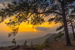 Soluppgång och mist på berget Royaltyfri Fotografi
