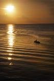 Soluppgång- och solnedgånglandskap Arkivbild