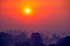 Soluppgång ovanför trädet i molnen Royaltyfri Fotografi