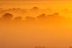 Soluppgång ovanför trädet i molnen Fotografering för Bildbyråer