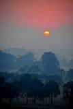Soluppgång ovanför trädet i molnen Arkivbilder