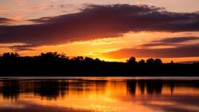 Soluppgång på ö sjönaturvårdsområde Kanada Royaltyfri Bild