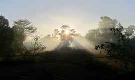 Soluppgång på 4000 öar Royaltyfri Foto