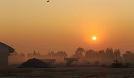 Soluppgång på agriproduct som bearbetar etableringen royaltyfri foto