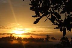 Soluppgång på att bryta Arkivfoton