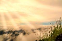Soluppgång på berget med havet av ny naturbakgrund för mist Arkivbilder