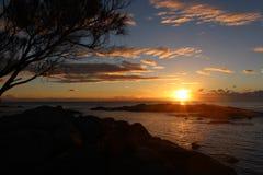 Soluppgång på den Binalong fjärden, Tasmanien Arkivfoton
