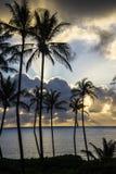 Soluppgång på den Makapu'u stranden, Oahu, Hawaii Arkivfoto