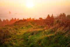 Soluppgång på den Oregon kusten Royaltyfria Bilder