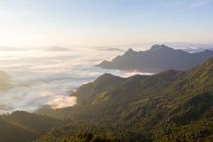 Soluppgång på den Phu chifa, Chiang Rai, Thailand Arkivbilder