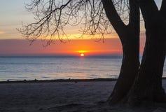 Soluppgång på den Pratt stranden, Chicago arkivbild