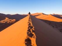 Soluppgång på dyn 45, Namib öken, Namibia royaltyfria bilder