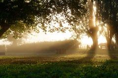 Soluppgång på en dimmig morgon på en lantgård arkivfoto