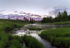 Soluppgång på en skogflod Arkivfoton