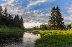 Soluppgång på en skogflod Royaltyfria Bilder