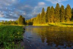 Soluppgång på en skogflod Royaltyfria Foton