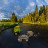 Soluppgång på en skogflod Royaltyfri Foto