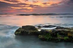 Soluppgång på gömma i handflatan kusten Arkivfoto