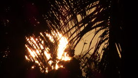 Soluppgång på Kalama - Kailua, Hawai'i Arkivfoto