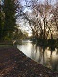 Soluppgång på kanalen med trädreflexion Arkivbilder
