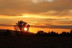 Soluppgång på kullen Royaltyfri Fotografi